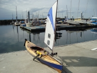 Wood Duck and Sail